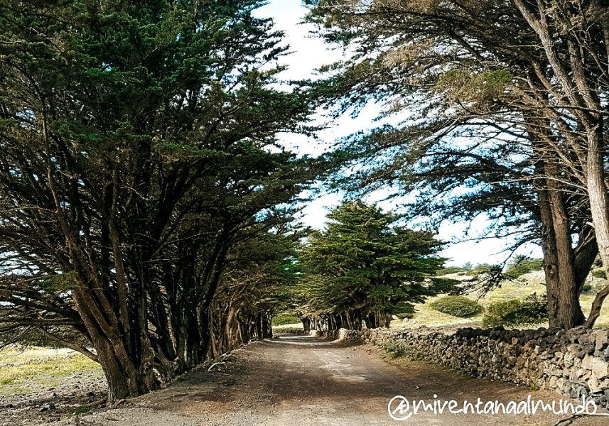 Ruta por el sur de El Hierro