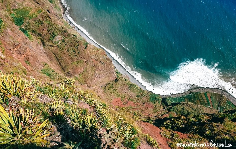 ruta por Madeira con perro
